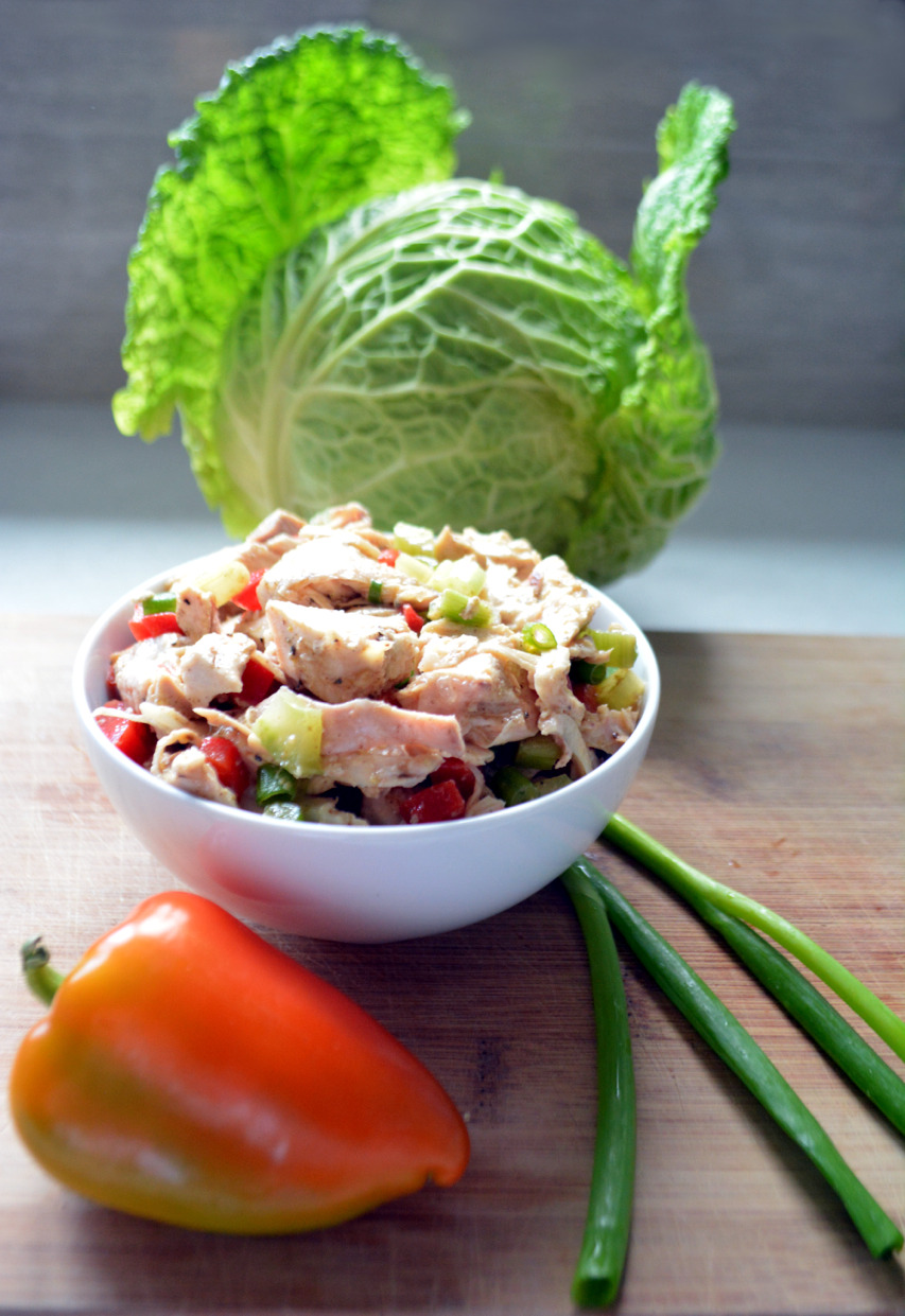 Supremely Simple Dairy-free Dijon Chicken Salad - this recipe makes for a quick, easy and nutritious lunch or dinner!