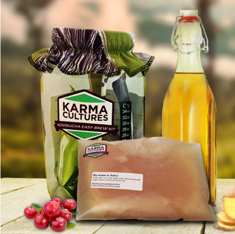 Complete Kombucha Starter Kit - Healthy Holiday Gift Idea
